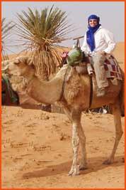 camel2_thmb
