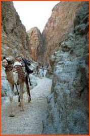 canyon2_thmb